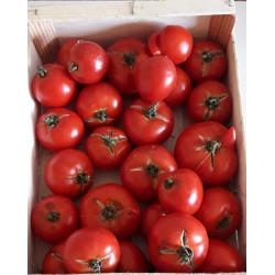 Tomates coulis (5kg)